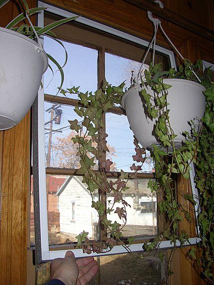 interior storm window inserts noise reduction window moraninsidenorthsmallinstall02u575jpg product details energysavr window inserts