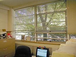 Conserve energy and feel warmer at work with window insulation